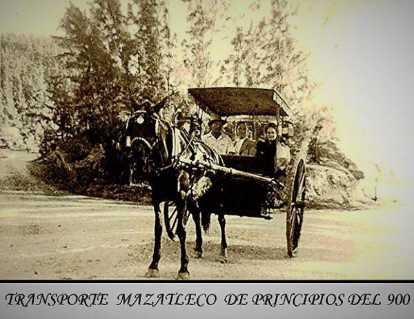 Arañas de Mazatlán Transporte Típico y Original
