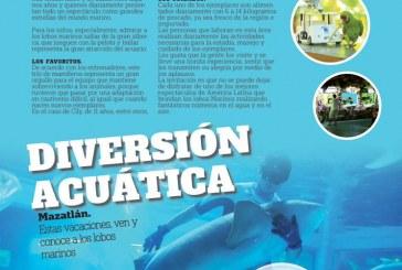 Visita el Acuario Mazatlan este Verano