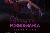 Una investigacion Pornografica