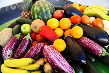 Prevé Agricultura 290.7 millones de toneladas de producción agrícola, pecuaria y pesquera en 2021