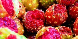 Sinaloa al color de sus frutas de temporada