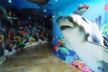 Acuario Mazatlán se declara listo para recibir a miles de turistas este verano 2016
