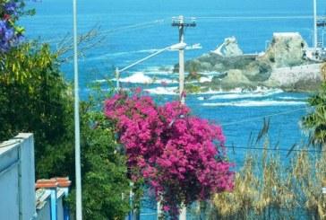 Mazatlán ha vuelto y con ello beneficia a San Diego: San Diego Union-Tribune