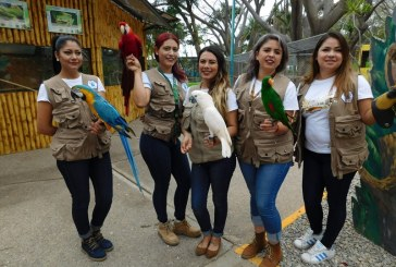 Despidos en Acuario Mazatlán son inevitables.