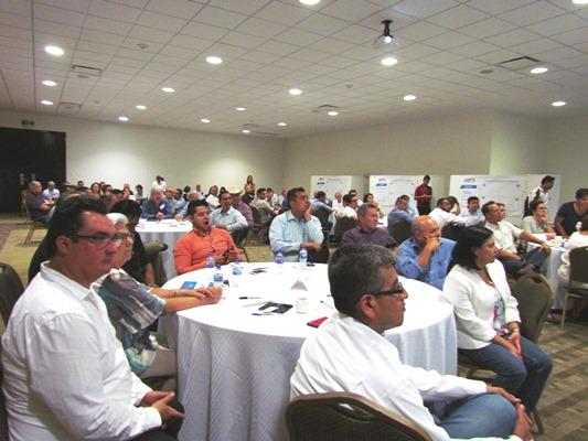 Imlementación, ARE, Agenda, Regional,Estratégica, Codesin, Zona Sur, 217