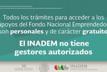 Ventanas oficiales para poder introducir un proyecto ante INADEM
