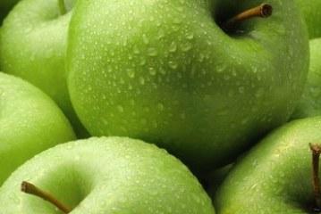 <center>¿Conoces al árbol de Manzana?… ¡¡¡Yo, ya!!!</center>