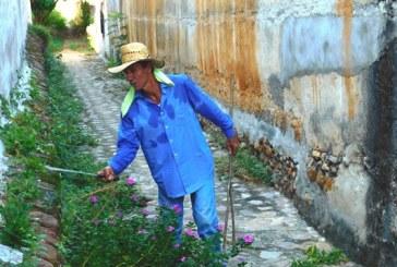 <center>La Fiesta de la Taspana debe ser declarada Patrimonio Cultural de Sinaloa</center>