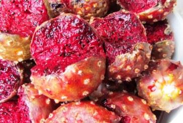 <center>Las Pitahayas dan colorido y sabor en San Ignacio</center>