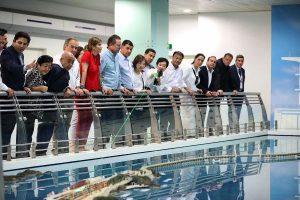 Puerto de Shanghai China Visita Delegación Sinaloanse Mayo de 2018 2