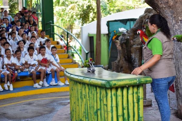 Acuario Mazatlán MI Acuario Galaría 2018 (1)