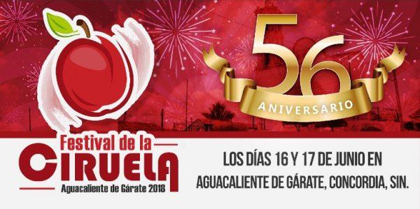 Festival de la Ciruela de Agua Caliente de Gàrate Zona Trópico Sinaloa 2018 Banner