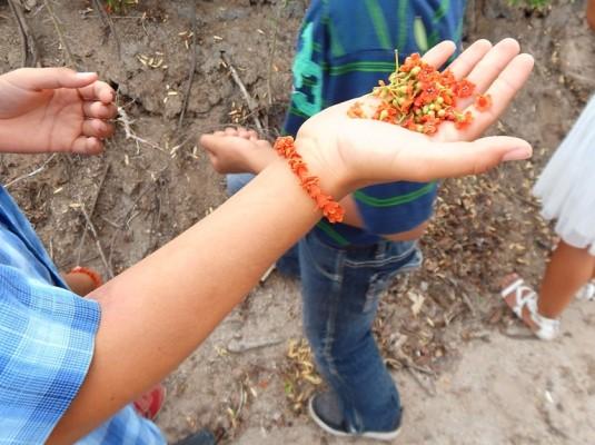 Festival del Maíz y Día de San Juan Elota Pueblo Señorial 2018 Invitación (7)