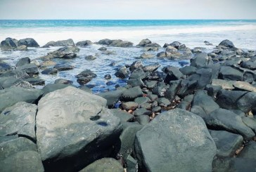 <center>Buscan Sectur Sinaloa y el Municipio de San Ignacio: Playa Limpia para Las Labradas</center>