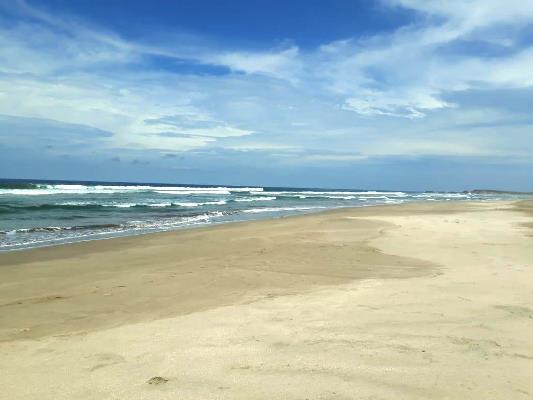 Buscan Playa Limpio Las Labradas 2018 (3)