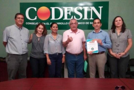 <center>Codesin Zona Sur es: ITR</center>