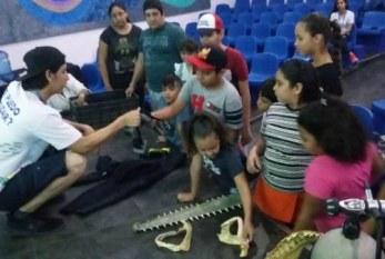 Campamento de Verano de Acuario Mazatlán