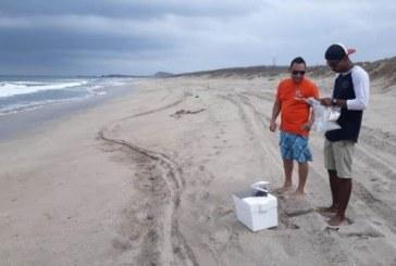En busca del nombramiento de Playas Limpias