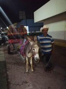 Callejoneada de las Ánimas en El Rosario Pueblo Màgico Sinaloa México 1