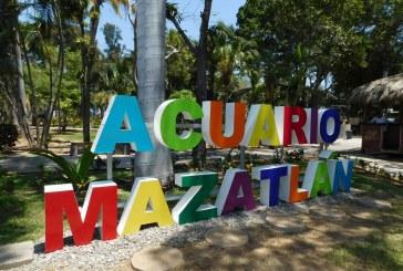 Rebasa expectativas Acuario Mazatlán