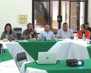San Ignacio CODESIN Zona Sur Conformación Consejo Ciudadano Enero 2019