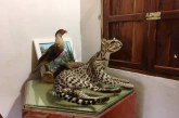 Encuentro Leyendo y Escribiendo por El Jaguar