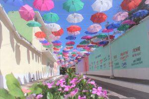 Conoce la Ruta de las Misiones de San Ignacio Sinaloa México 2019 4