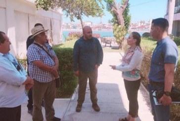 La producción de tilapia en Sinaloa es buena