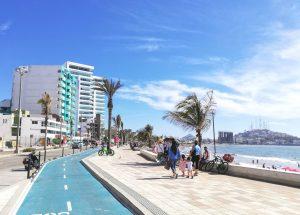 Palmeras del Malecón de Mazatlán Mitos y Mitotes pero el Químico Benítez no hace nada 2019 1