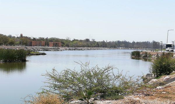 Parque Central y Nuevo Acuario de Mazatlán detonantes de Nueva Conciencia Sustentable 3