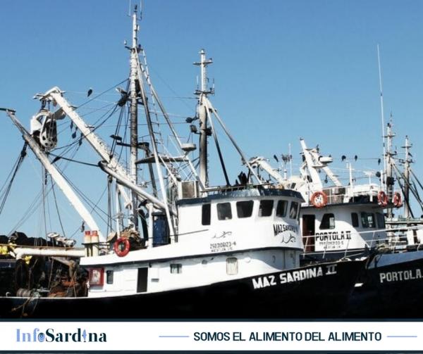 La Sardina como alimento en México Mazatlán Interactivo 2019 10