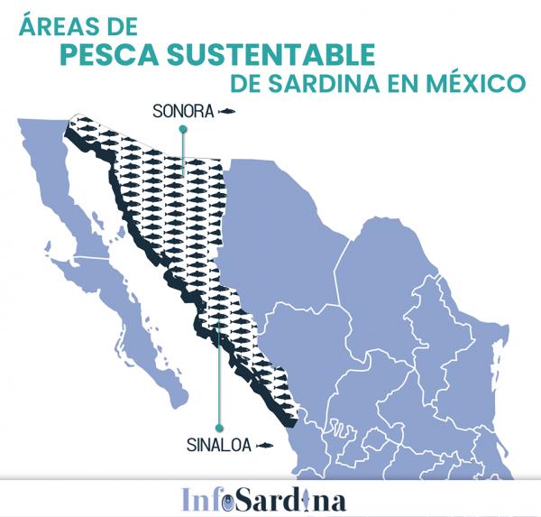 La Sardina como alimento en México Mazatlán Interactivo 2019 3