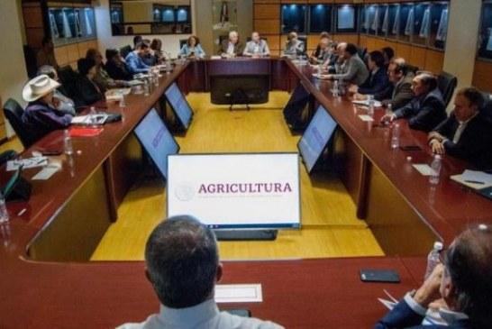 Preparan estrategia a favor de los exportadores nacionales de Sinaloa
