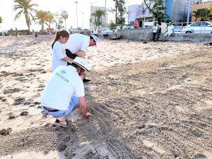 Jornada Limpiez Playa Pinitos Mazatlán 2019 2