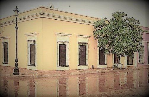 Mocorito Pueblo Mágico Girasoles 2019 a2