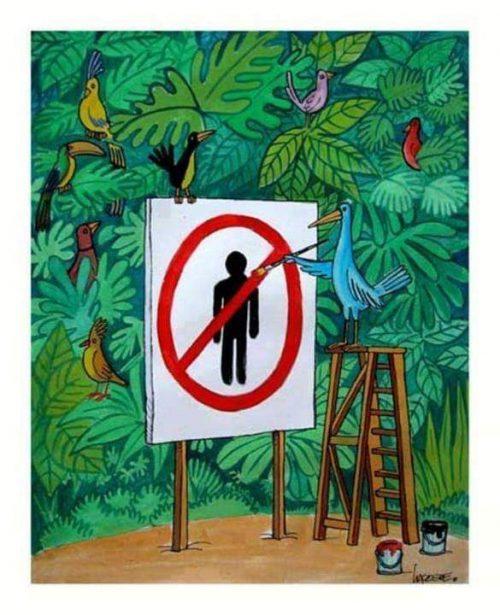 No al Hombre Mundo Pájaro jajjajajaj