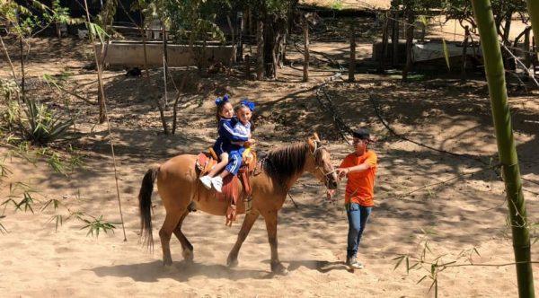 Tercer Aniversario La Vaca Lupe La Noria Mazatlán Zona Trópico 5 2019