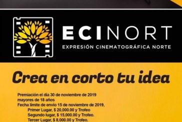 ECINORT 2019
