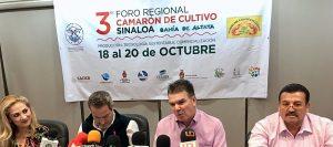 Feria del Camarón de ALtata Sinaloa México 2019 1