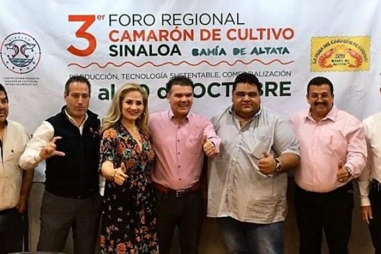 SECTUR Sinaloa invita a la II Feria del Camarón en Altata 2019