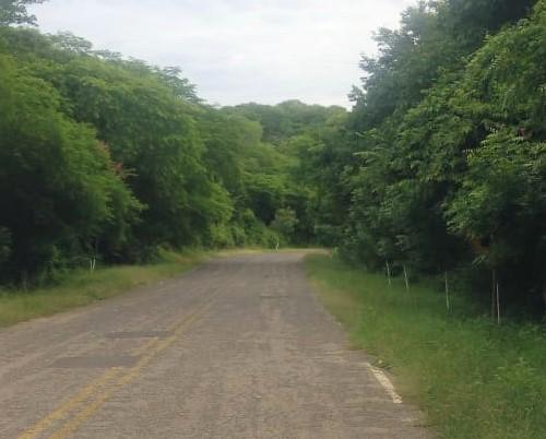 Ixpalino Zona Trópico San Ignacio Sinaloa México Ejemplo de Limpieza 2019 4