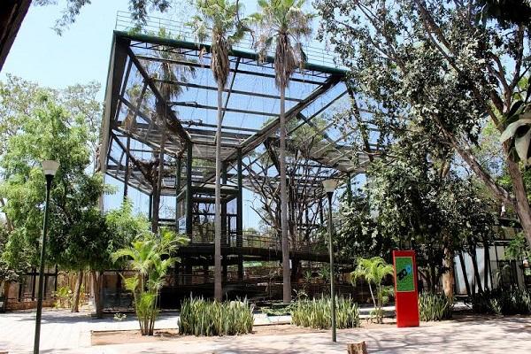 Mazatlán Interactivo desde Culiacán Sinaloa México Anuncia Reportajes Octubre de 2019 (5)