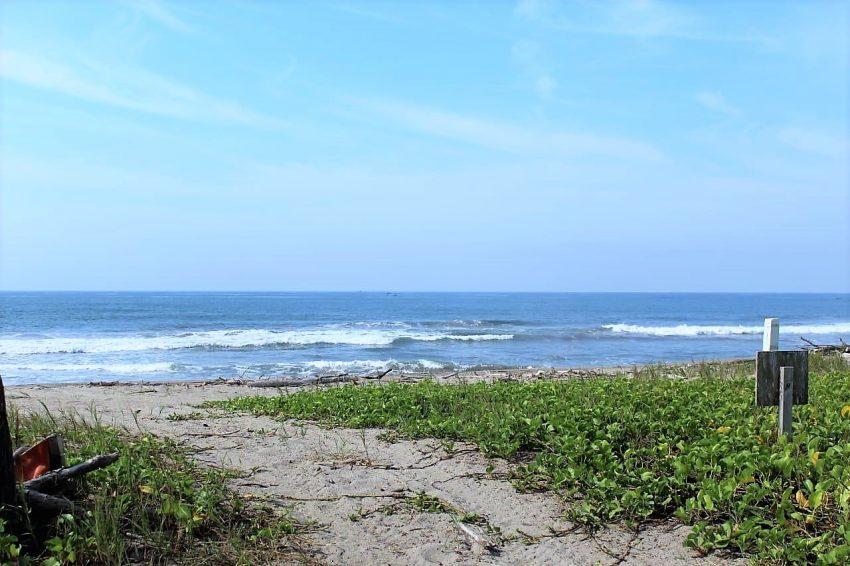 El Verde Camacho se Consolida como Playa Limpia Sustentable 2019 1