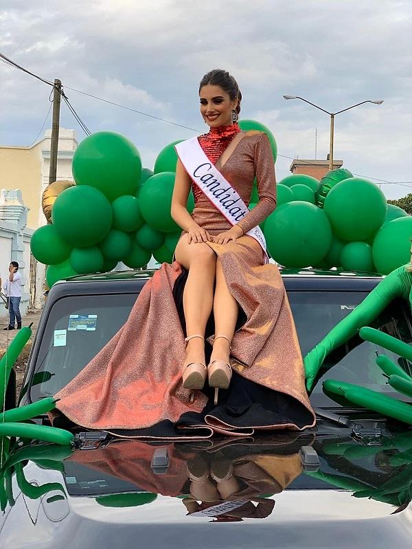 Primera Manifestación del Carnaval de Mazatlán 2020 (12)
