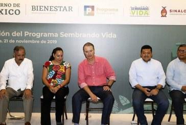Con 'Sembrando Vida' generarán 10 mil empleos en Sinaloa con 50 mdp al mes