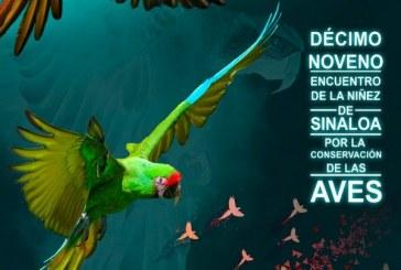 '19 Encuentro de la Niñez por la Conservación de las Aves'