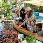 Demuestra Acuario Mazatlán ser un Gran Atractivo