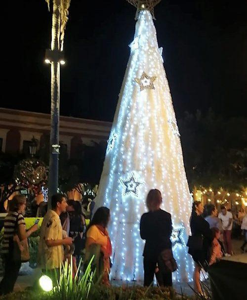 Encendido de Luces Navideñas Plazuela Machado Mazatlán 2019 4
