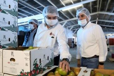 En 2018 Sinaloa Crece en el PIB por Arriba de la Media Nacional: Javier Lizárraga Mercado