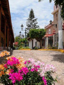 Zona Trópico Sinaloa mÉXICO 2020 2